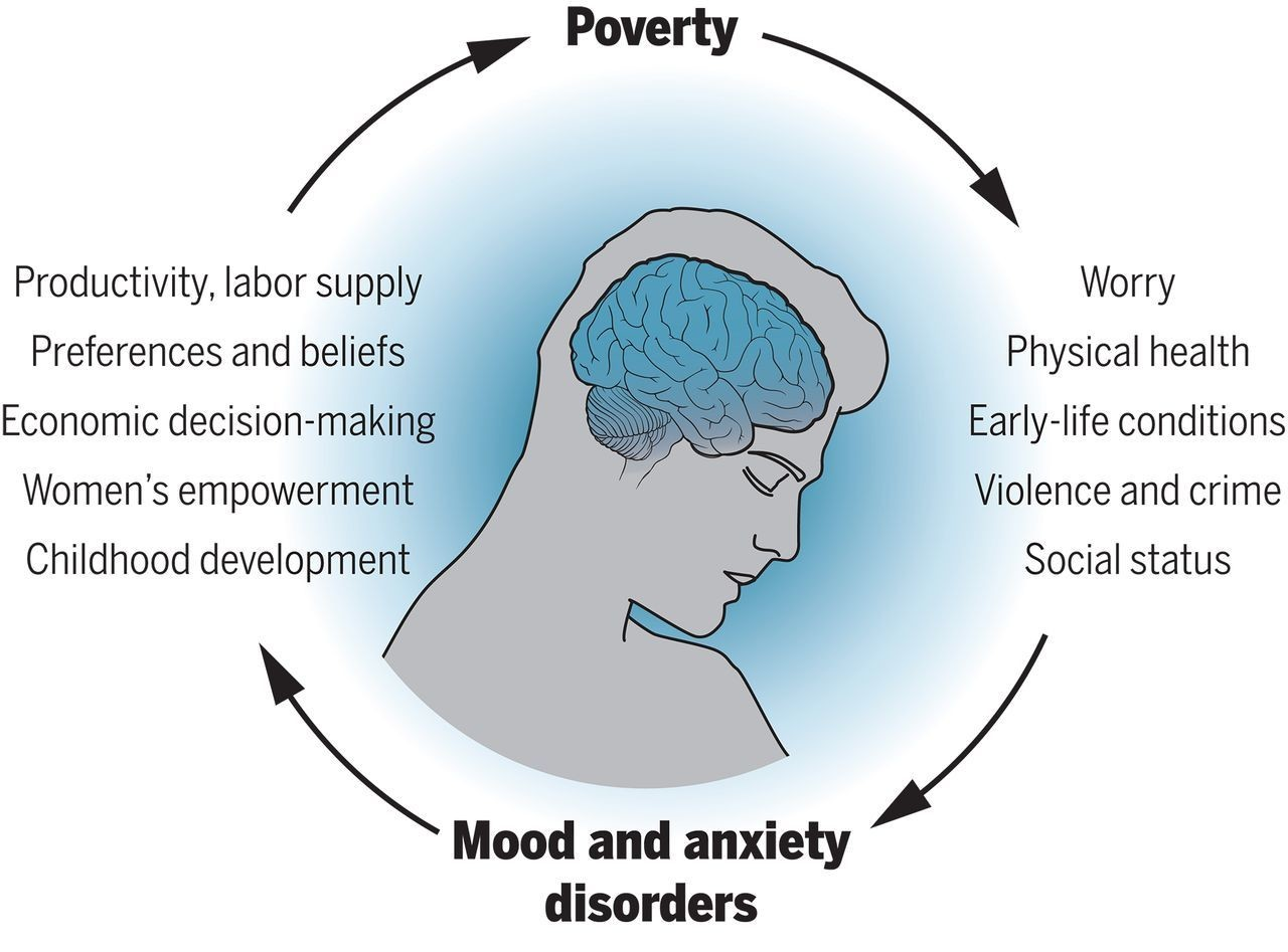The causal relationship between poverty and common mental illnesses.