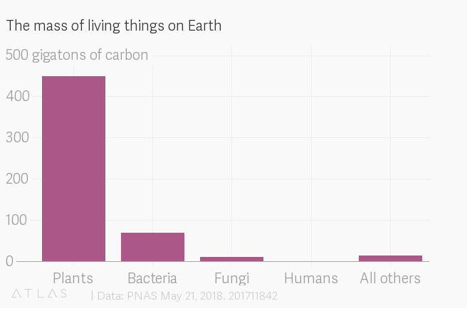 Humans account for just 0.06 of the 550 gigatons of carbon mass on the planet. That's less than mollusks, viruses, and segmented worms, among others.