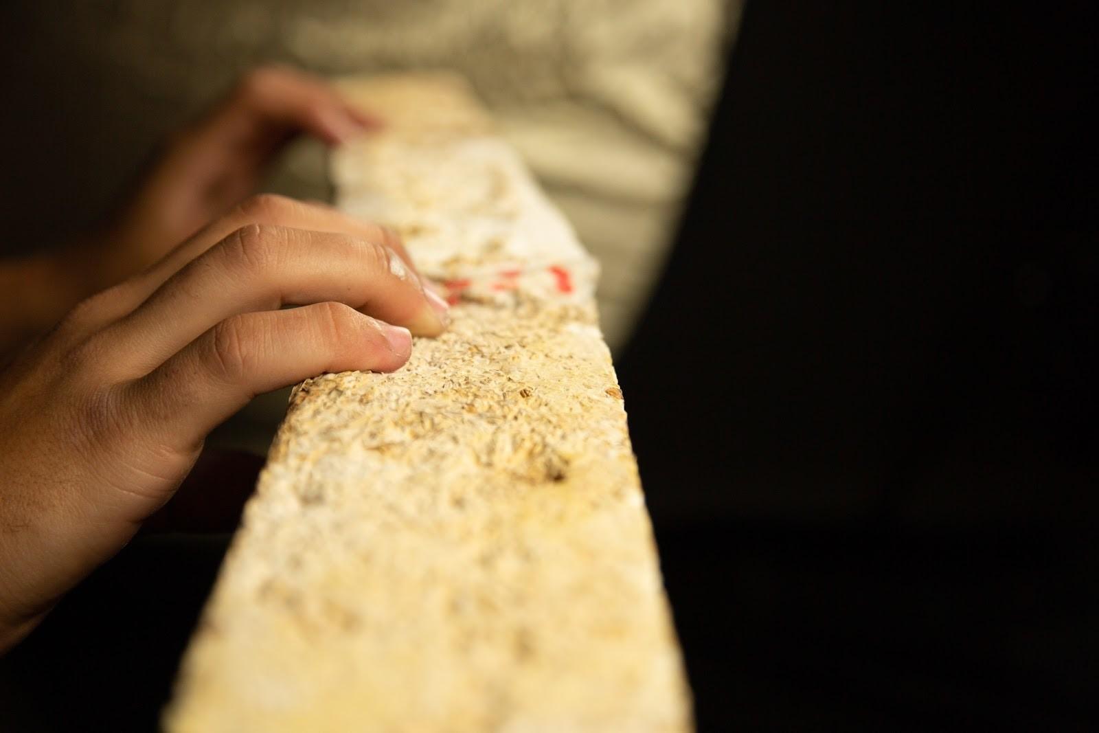image of one of Biohm's mycelium insulation panels.