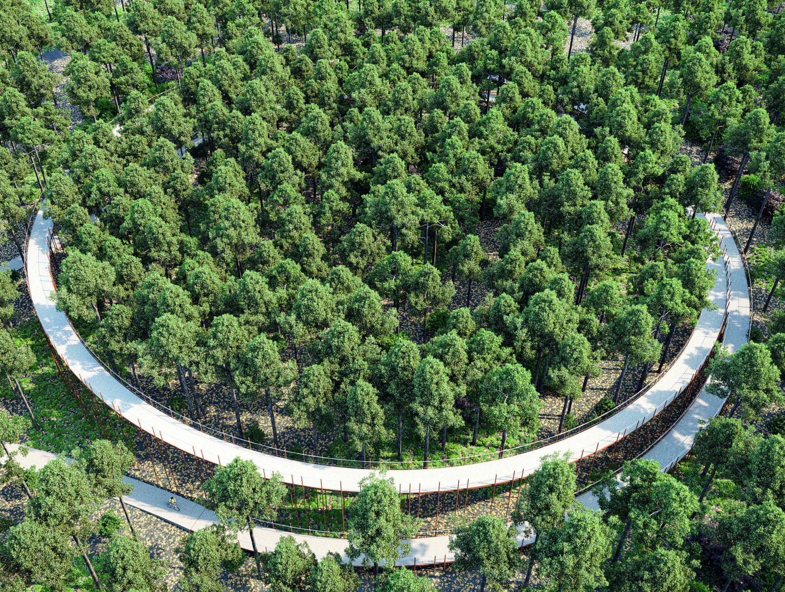 Limburg has designed a path that carries cyclists up into the air
