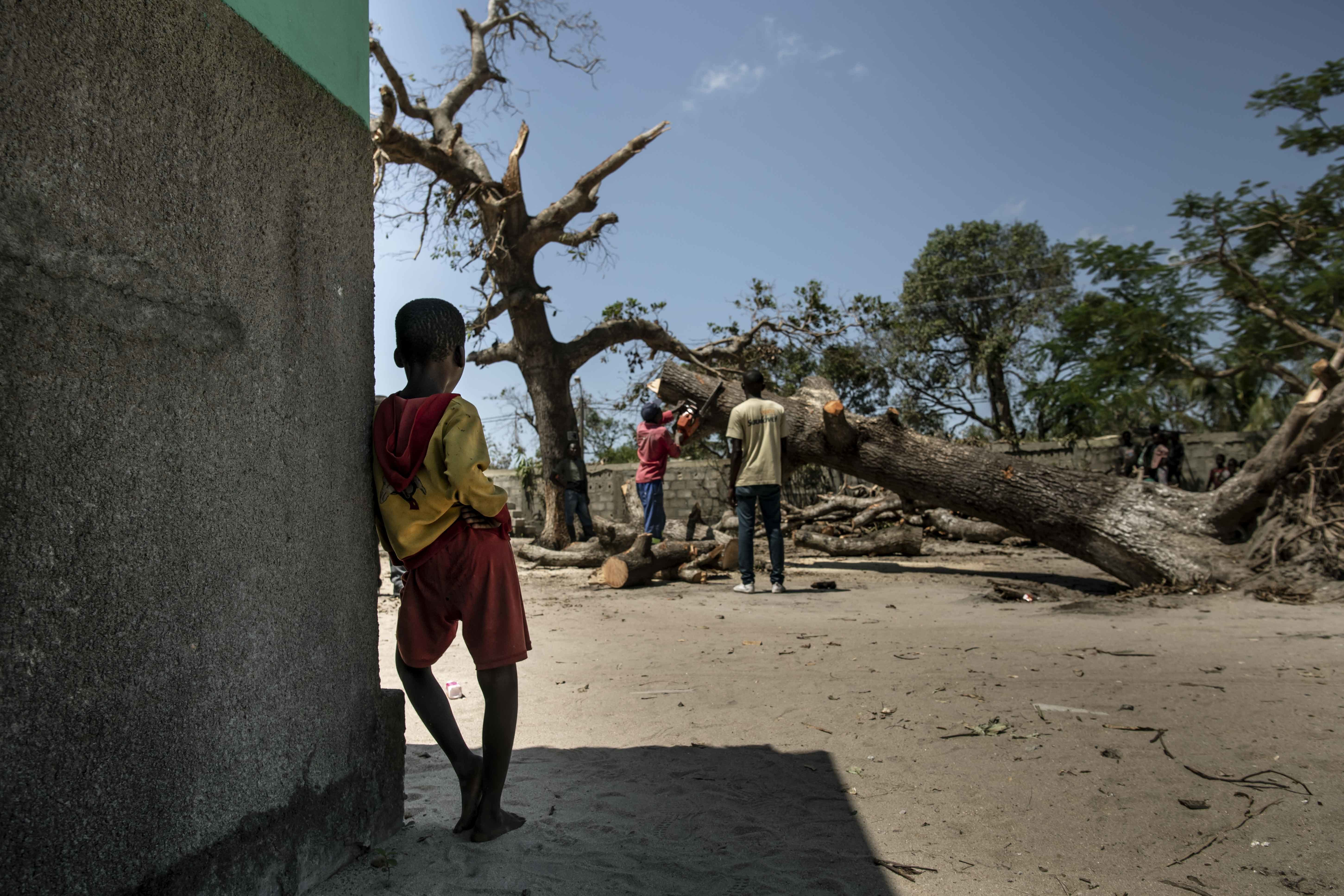 A boy watches a tree being cleared away in the aftermath of Cyclone Idai.