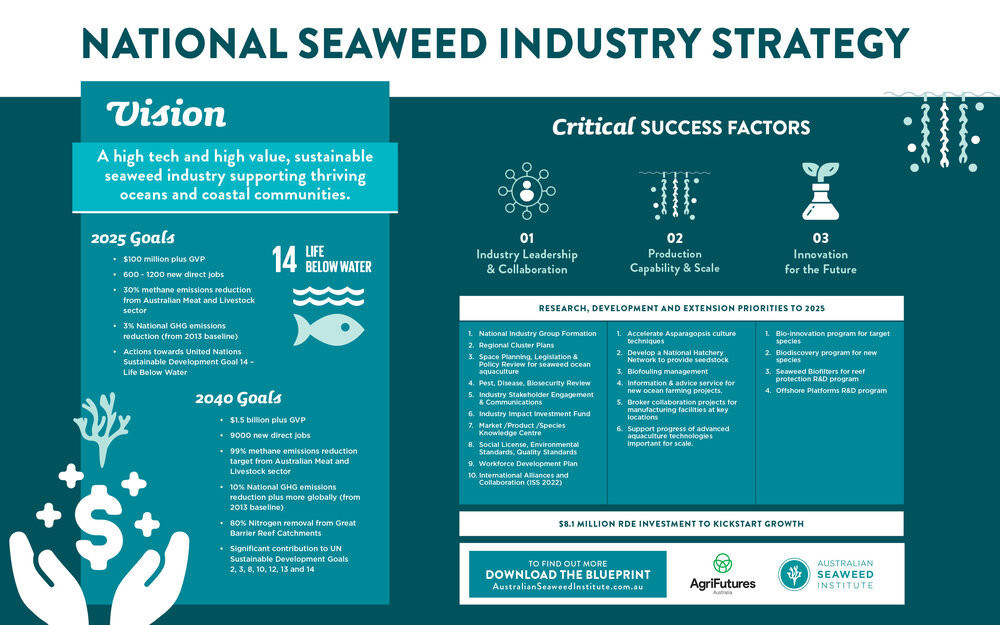 an infographic outlaying australia's national seaweed strategy