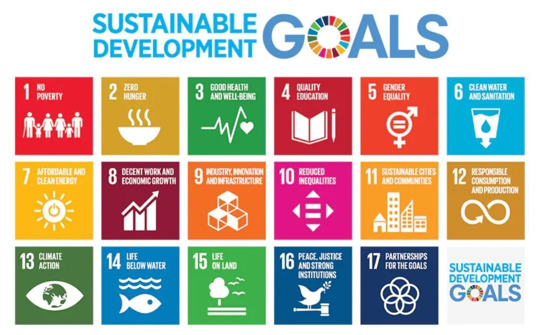 leadership is needed for the SDGs
