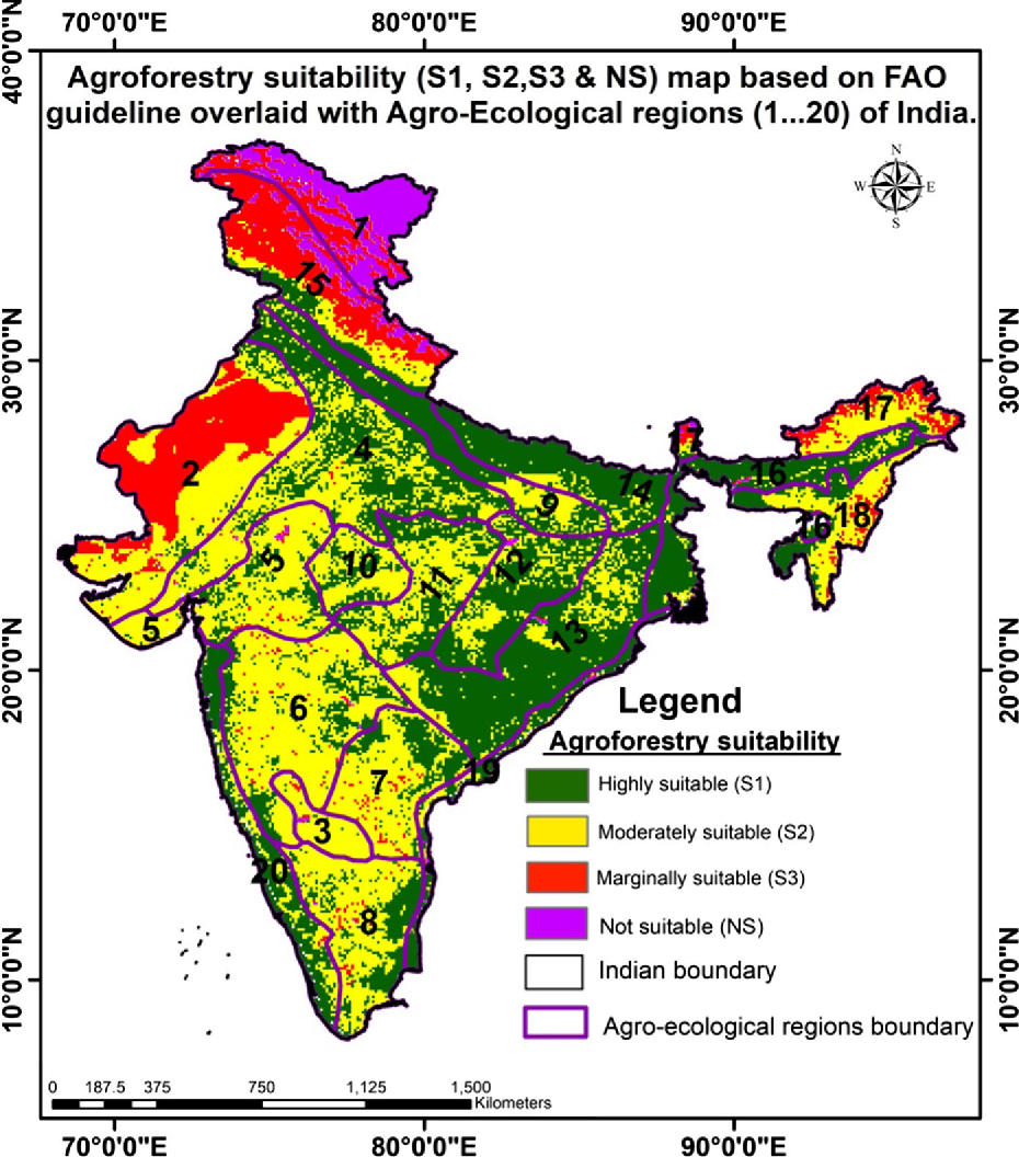 Huge swathes of India are suitable for agroforestry projects
