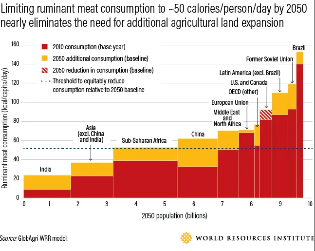 6 pressing questions about beef and climate change, answered