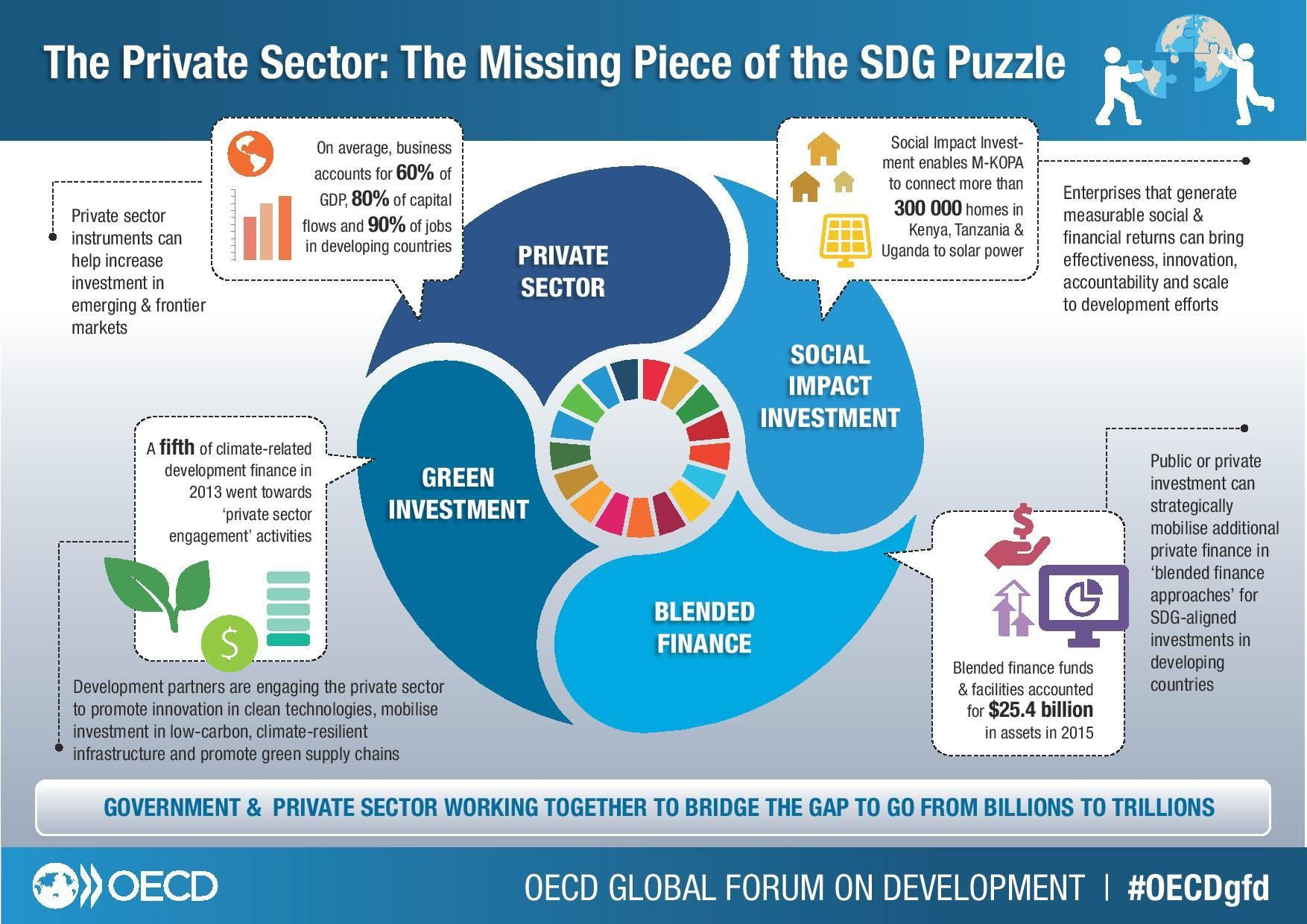 The Private Sector: The Missing Piece of the SDG Puzzle