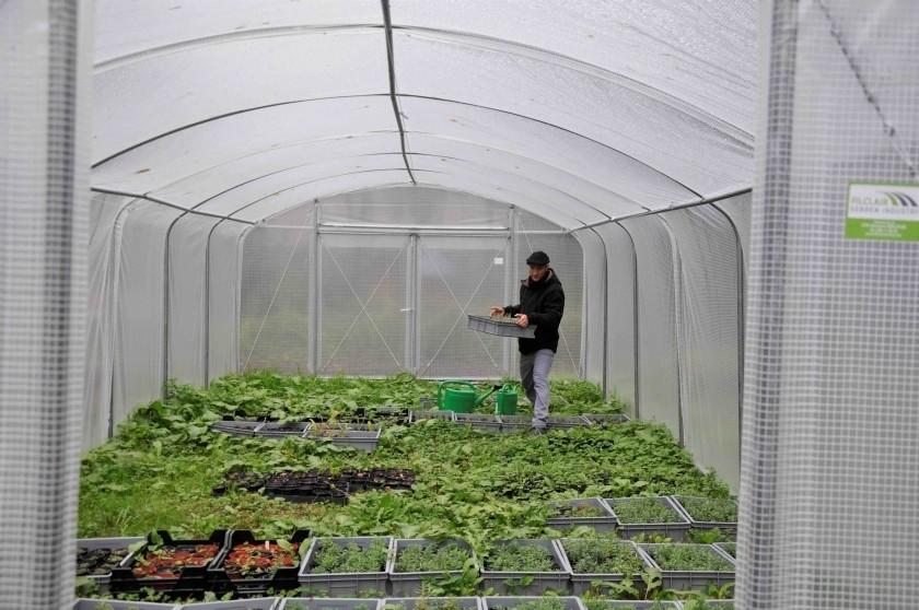 Cyril Benoit-Gonin, éco-jardinier et médiateur végétal