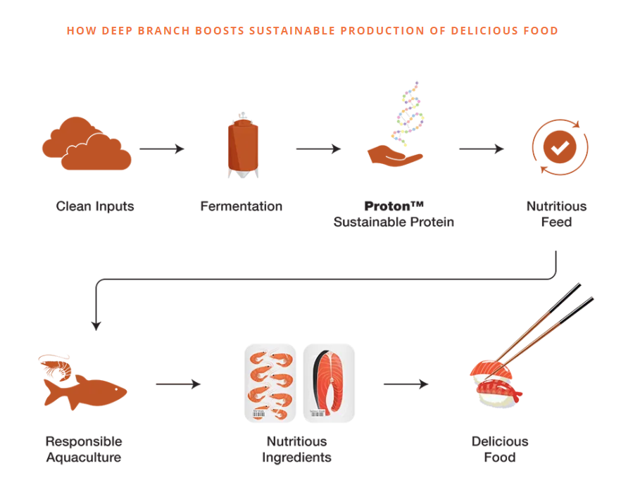 a diagram to show Deep Branch boosts the sustainable production of food