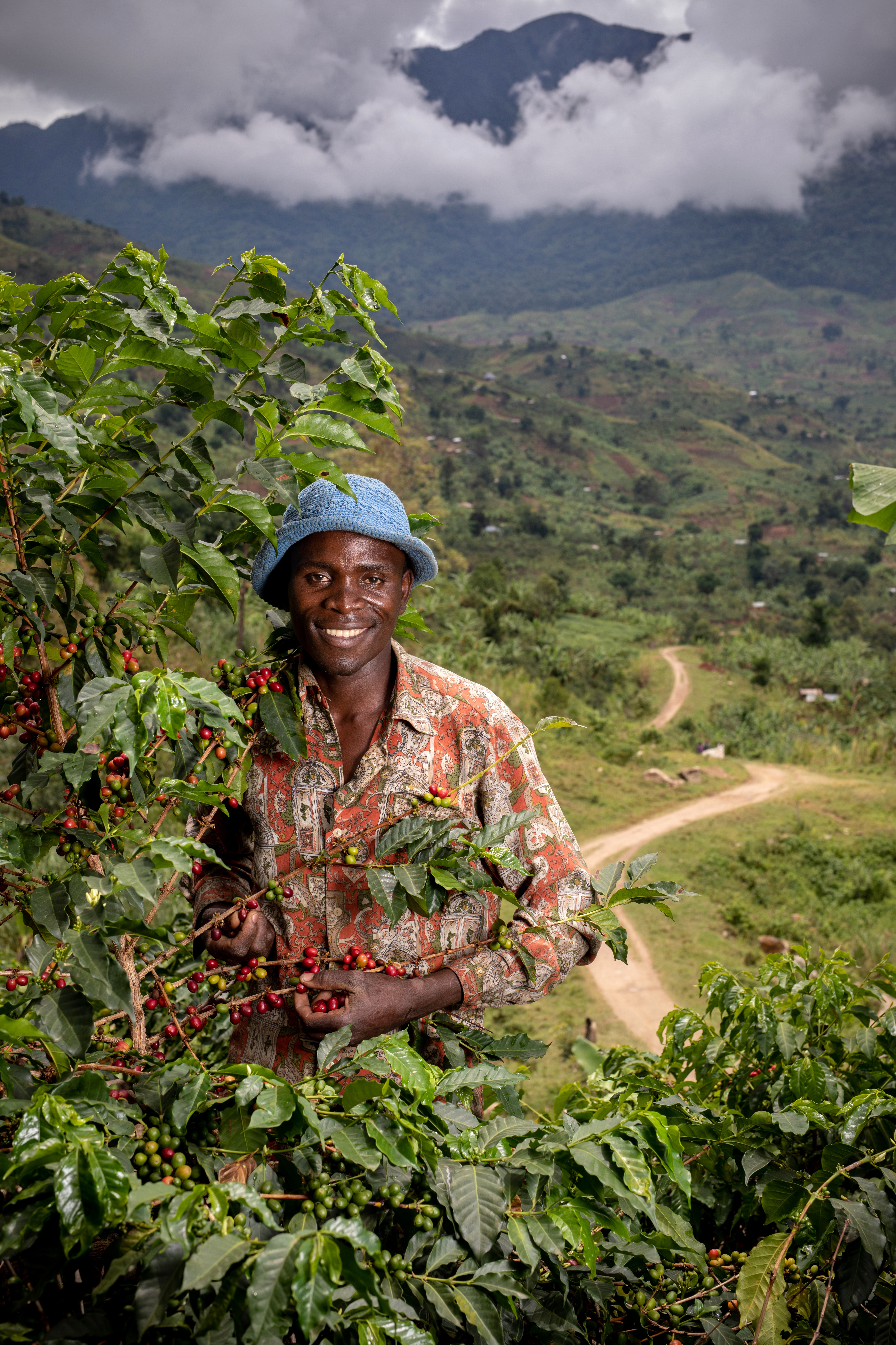 Joseph Kirimbwa, a 33 years old farmer member of the Nespresso AAA program to improve the yield and quality of coffee produced in the Rwenzori region of western Uganda, is harvesting coffee cherries in his coffee plantation in Mbata, a small village north of Rwenzori on March 28th, 2019.