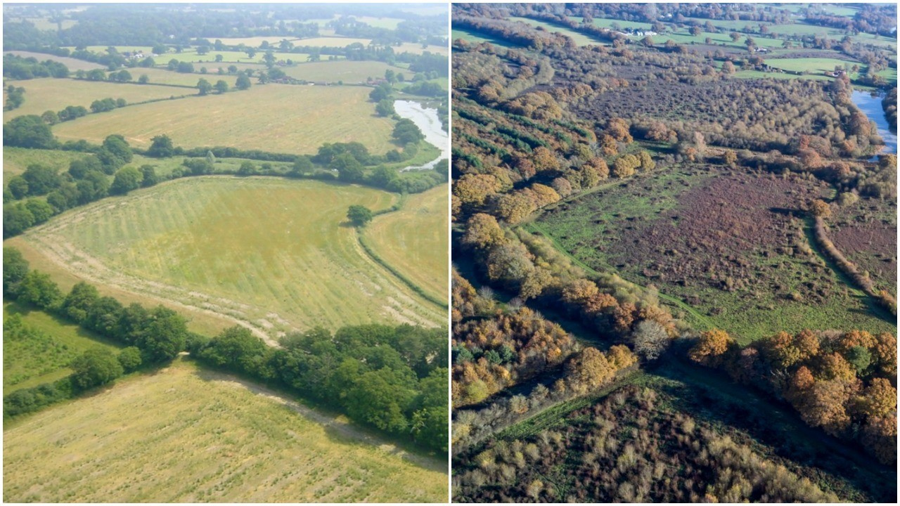 Before and after: how the landscape on the Knepp estate has changed under rewilding.