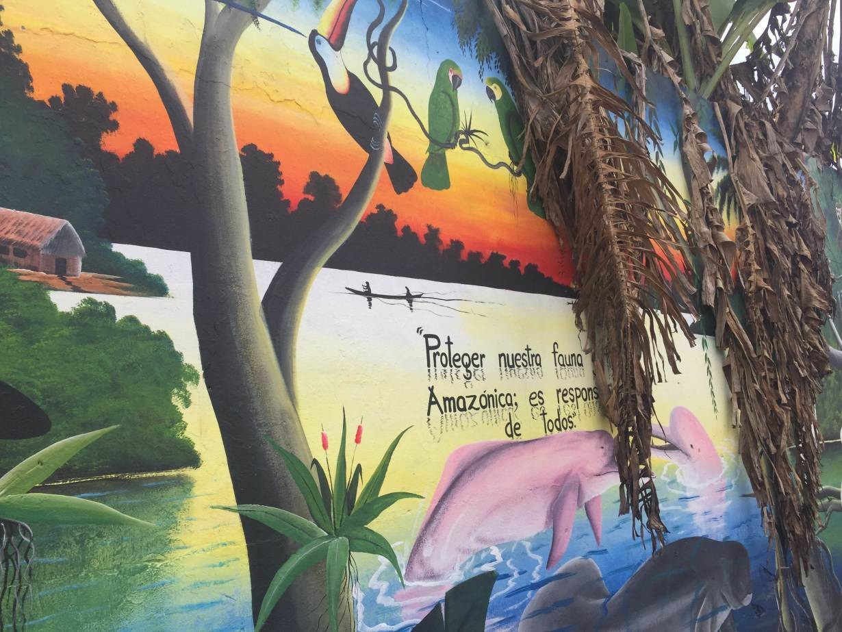 "A mural which reads ""Protect our animals. The Amazon is everyone's responsibility"