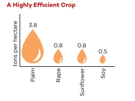 Una infografía que muestra las toneladas por hectárea de diferentes cultivos oleaginosos.