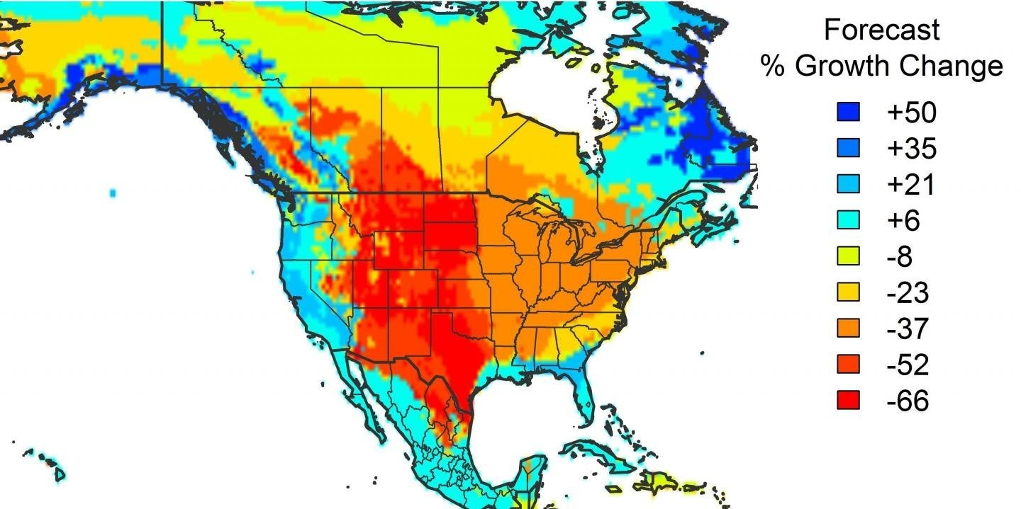 The forecast % growth change in U.S forests
