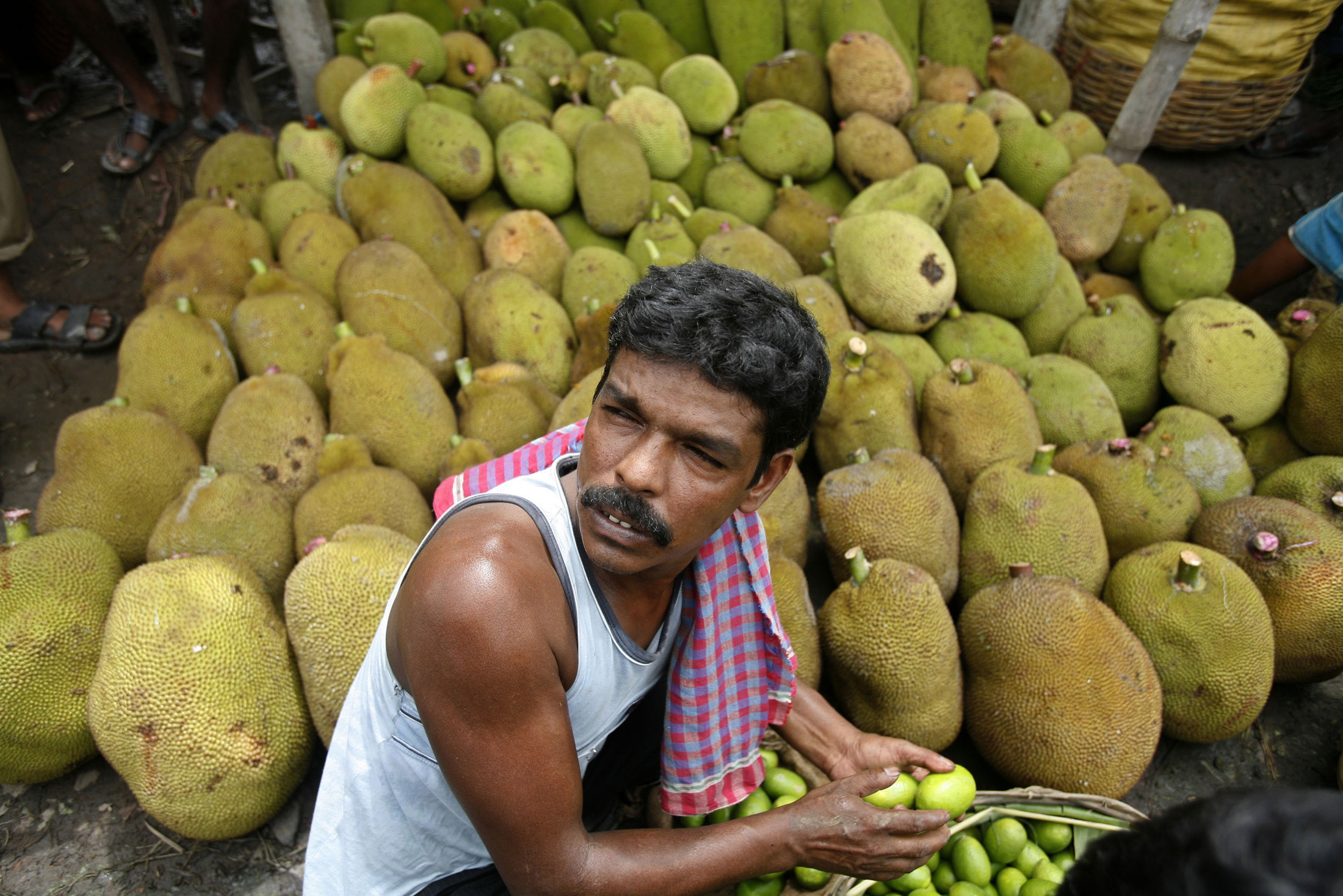A farmer holding lemons sits in front of a stall selling jackfruits at a wholesale vegetable market on the outskirts of the eastern Indian city of Kolkata June 21, 2008.The rising prices of food and imported fuel are pushing inflation in many parts of Asia to their highest in a decade, weakening trade and budget balances and complicating monetary policy. REUTERS/Parth Sanyal  (INDIA) - GM1E46L1MBC01