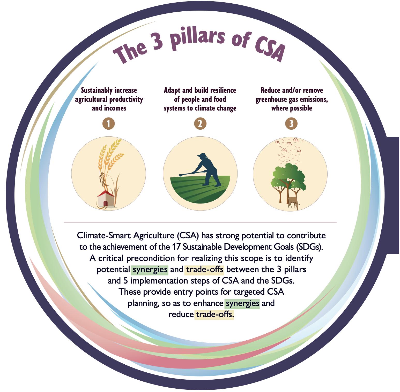 The 3 pillars of CSA