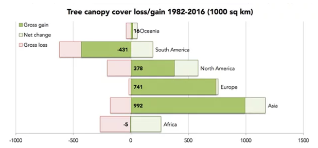 South America suffered the biggest global canopy tree loss