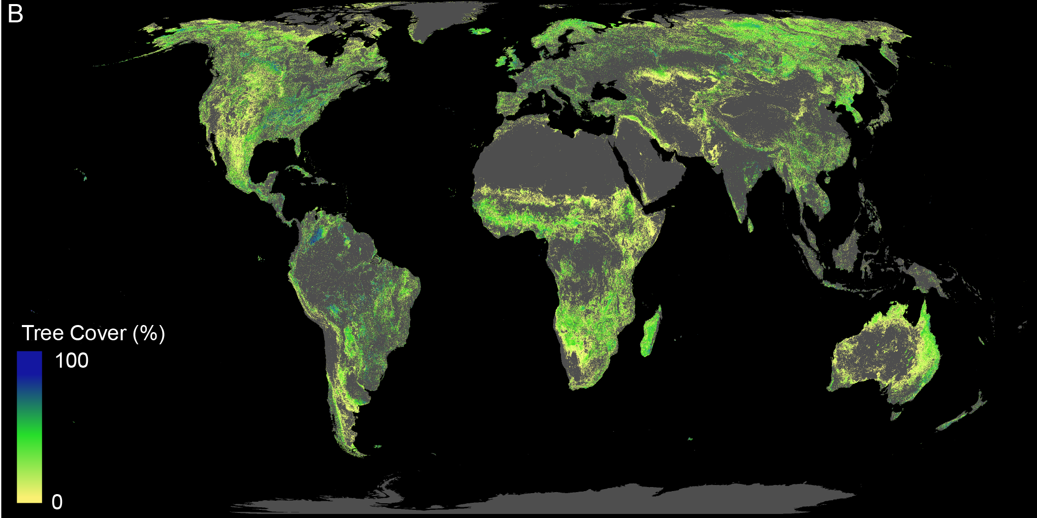 Land available for forest restoration (excluding deserts, agricultural and urban areas; current forestland not shown)