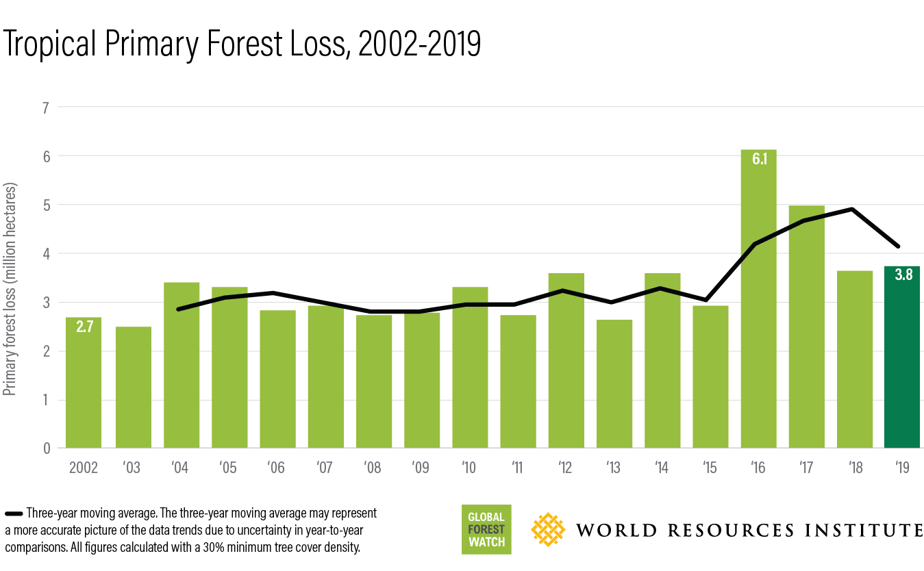 Tropical primary forest loss, 2002-2019
