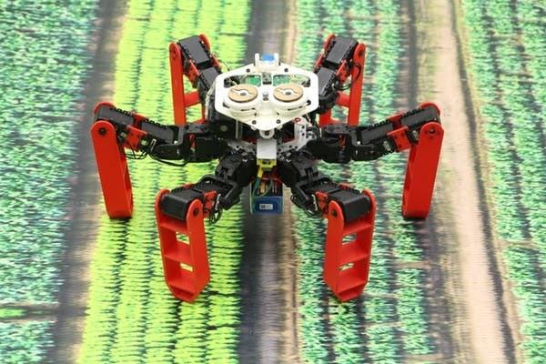 Le robot AntBot inspiré des fourmis du désert.