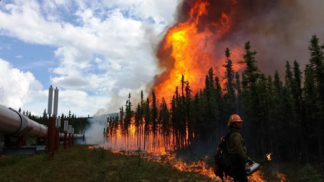 The Aggie Creek Fire is located 30 miles northwest of Fairbanks, AK started by a lightning strike on Jun. 22, 2015 has consumed an estimated 31,705 acres.  USFS photo.