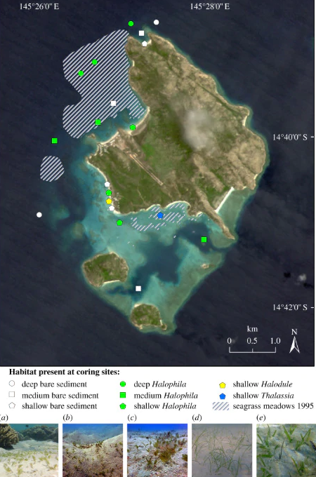 Sites around Lizard Island where sediments of seagrass were collected.