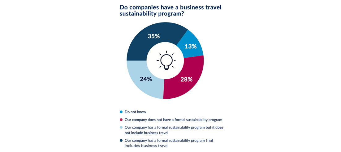 A pie chart showing how many companies have travel sustainability programmes.