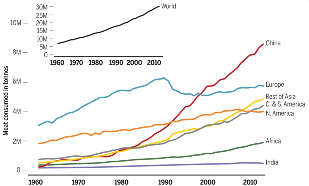 How our growing appetite for meat is harming the planet   World