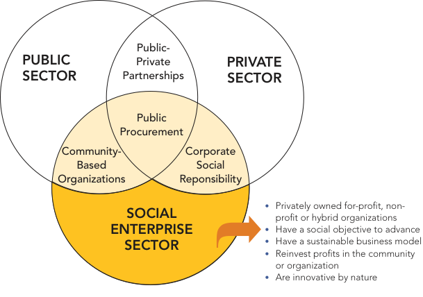 Social Enterprises: How They Fit and Thrive