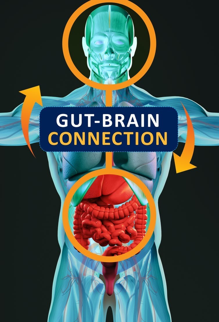 Gut microbes are known to play a role in mental health.