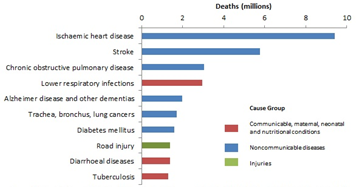 The top 10 causes of death globally in 2016.