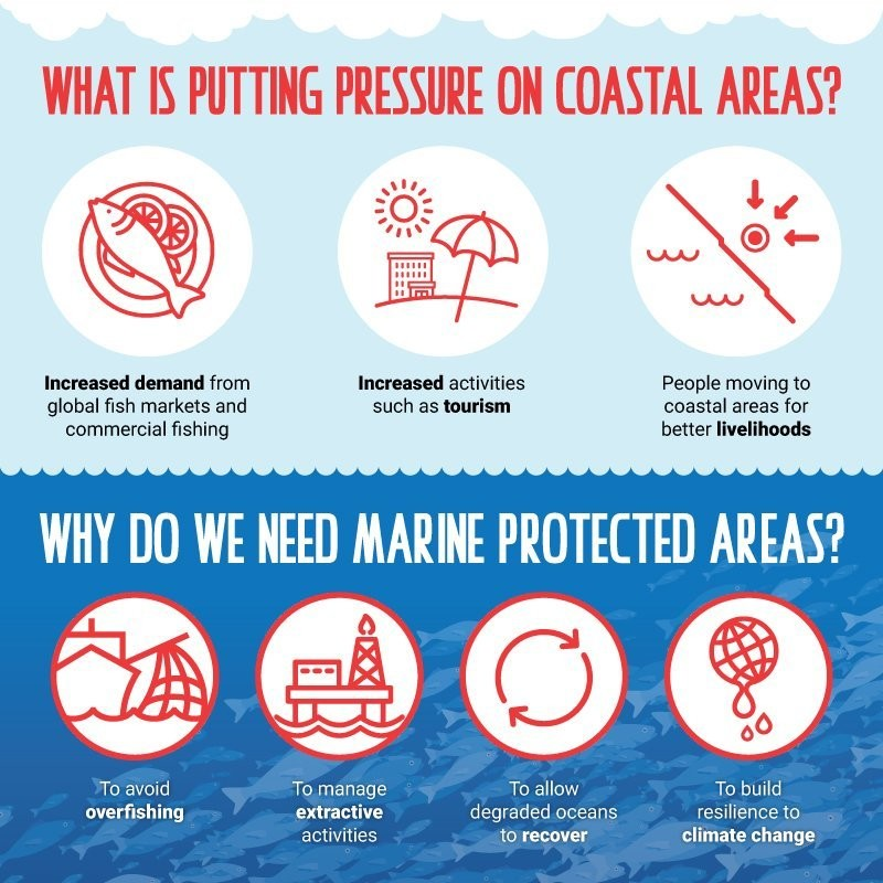 Pressure and management of coastal areas