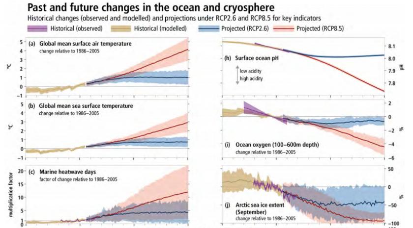 Graphiques issues dudernier rapportdu Giec sur l'océan et la cryosphère, anticipant l'évolution de différents éléments entre 1950 et 2100.