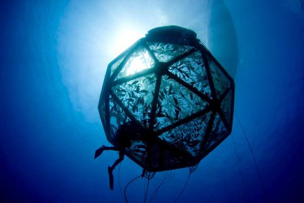 A mobile offshore aquaculture fish pen.