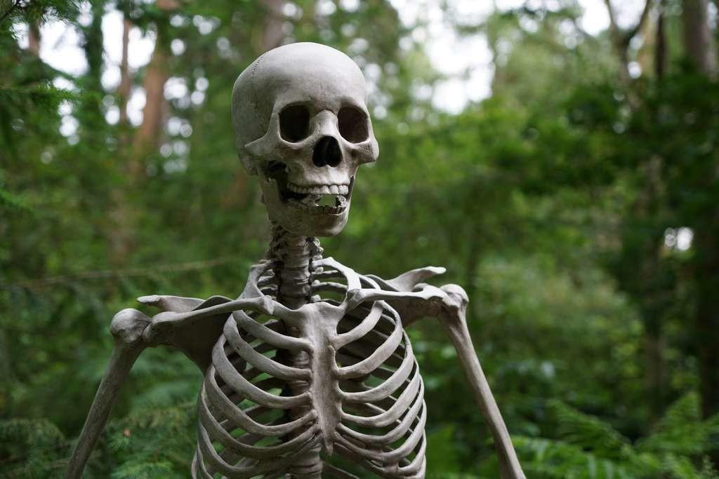 L'homme de Cioclovina est la trace du premier meurtre au sein du paléolithique supérieur en Europe.
