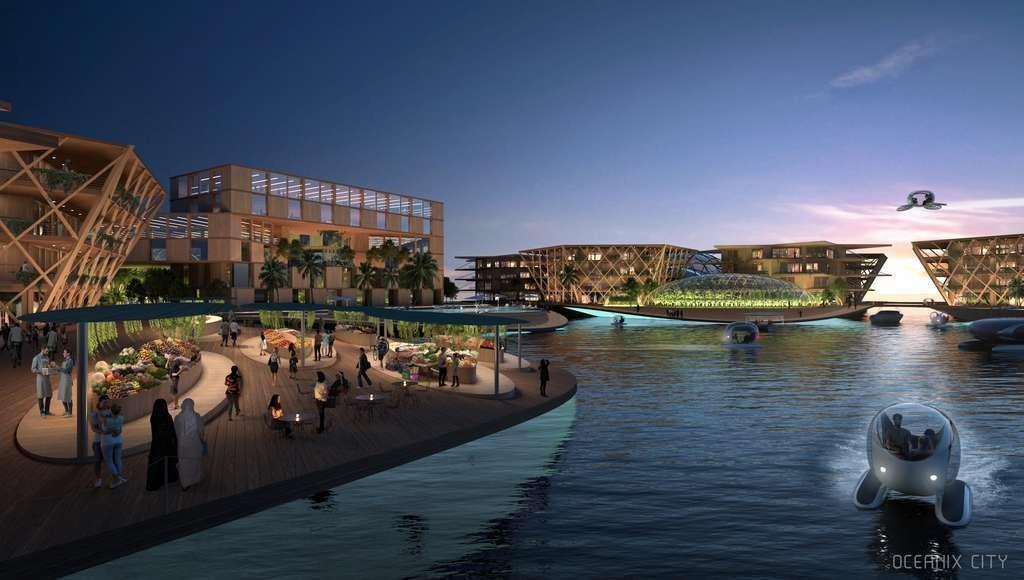 La ville sera construite en matériaux durables comme le bois et le bambou.