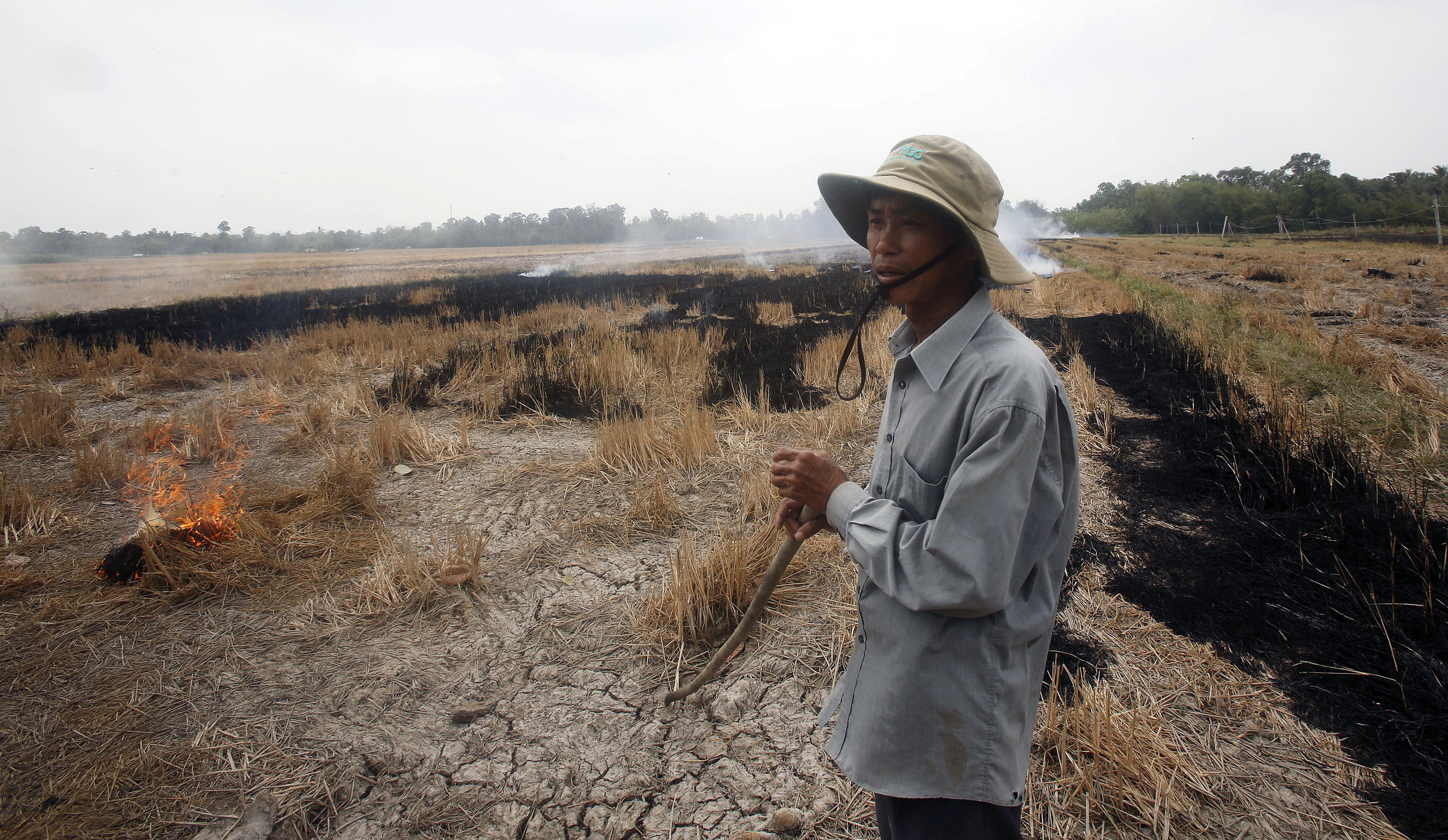 A farmer burns his dried-up rice on a paddy field stricken by drought in Soc Trang province in the Mekong Delta in Vietnam March 30, 2016.