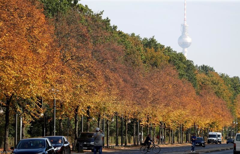 Autumnal trees of the Tiergarten park are pictured in front of the television tower in Berlin, Germany, October 15, 2019. REUTERS/Fabrizio Bensch     TPX IMAGES OF THE DAY - RC183BB0A2C0