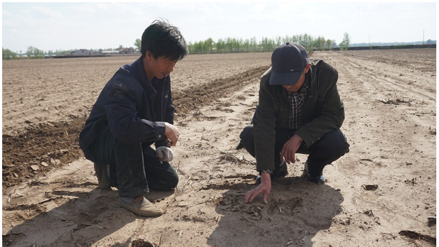Experts look at the soil in Xiaoqiaozi Village, Shijiabao Town, Lishu County