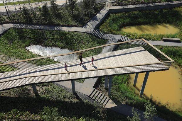image of the wetland in Haerbin, China