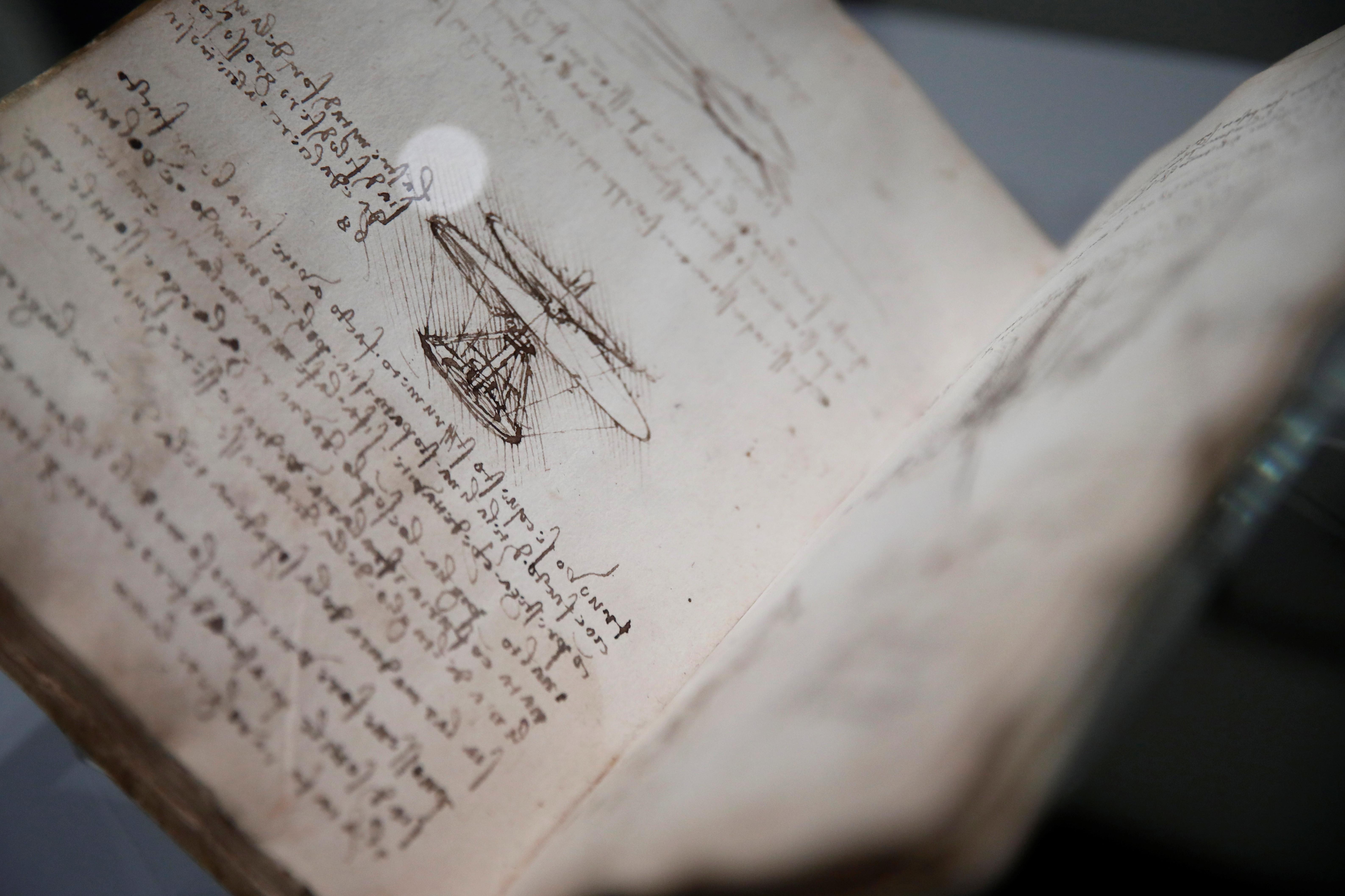 A drawing by Leonardo da Vinci.
