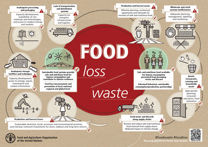 a diagram showing how to prevent food waste