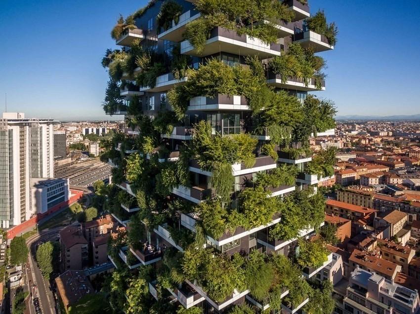 Árboles ciudades economía verde