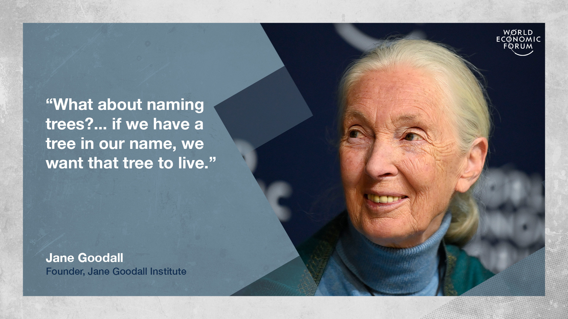Jane Goodall on saving trees at Davos
