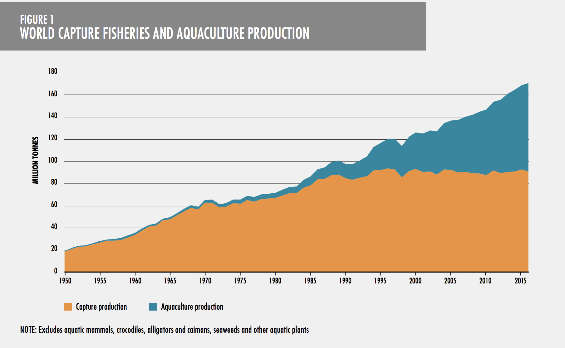Aquaculture is about to overtake fishing as our primary source of watery protein