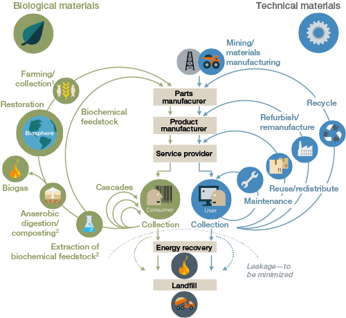 a graphic explaining how the circular economy works