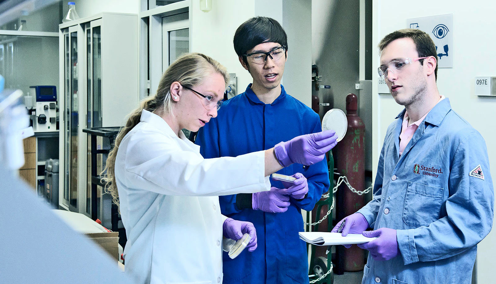 Maria Filsinger Interrante, Christian Choe, and Zach Rosenthal, aka Team Lyseia, strategize about upcoming experiments to test their new antibiotics.