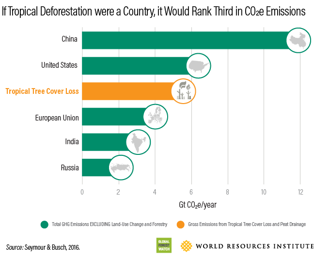 If tropical deforestation were a country, it would rank third in carbon dioxide-equivalent emissions, only behind China and the United States of America.