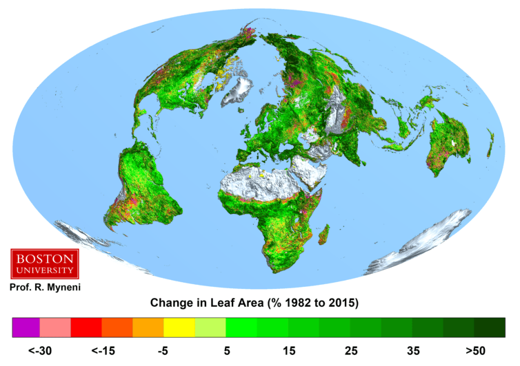 The changes in leaf areas as a percentage from 1982 to 2015