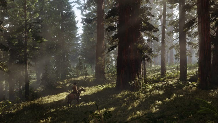 Exploring a forest in Red Dead Redemption 2