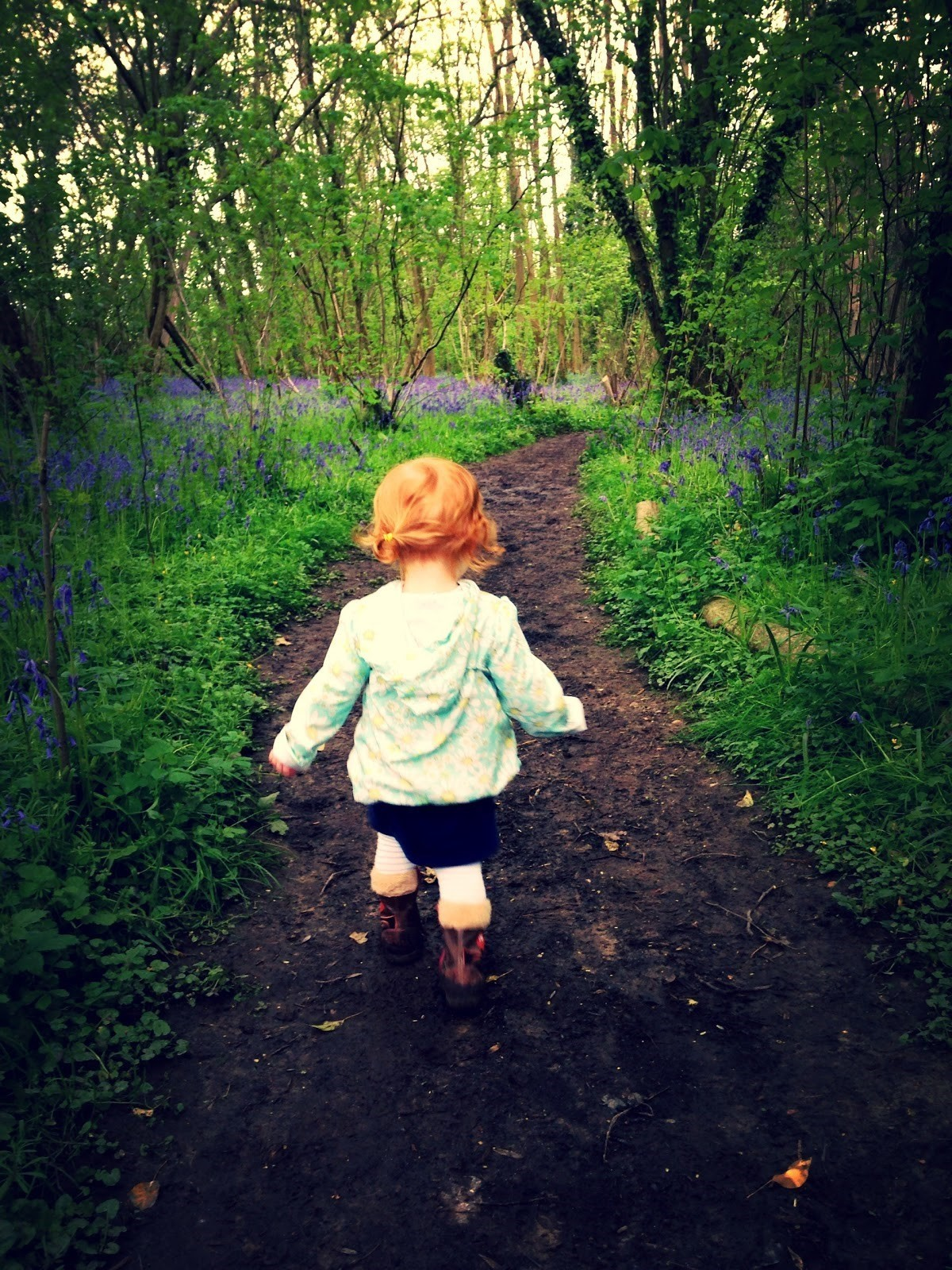 50% of British children are unable to identify a bluebell
